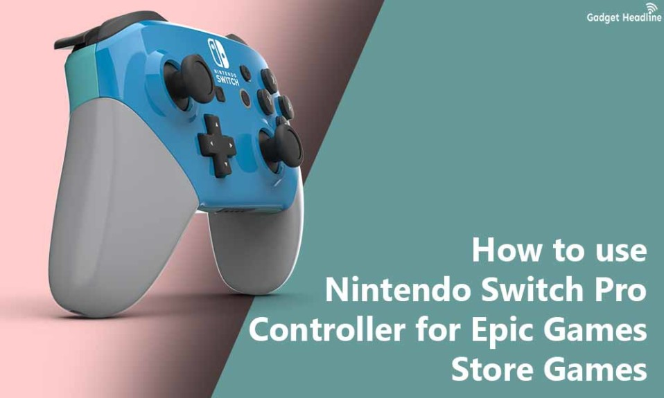 How to use Nintendo Switch Pro Controller for Epic Games Store Games